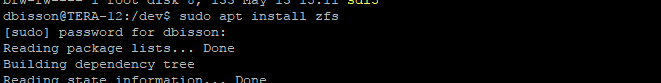 Installing ZFS support
